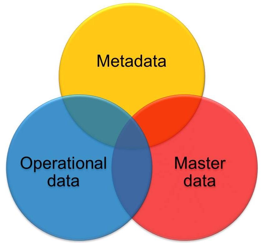 Data governance data elements
